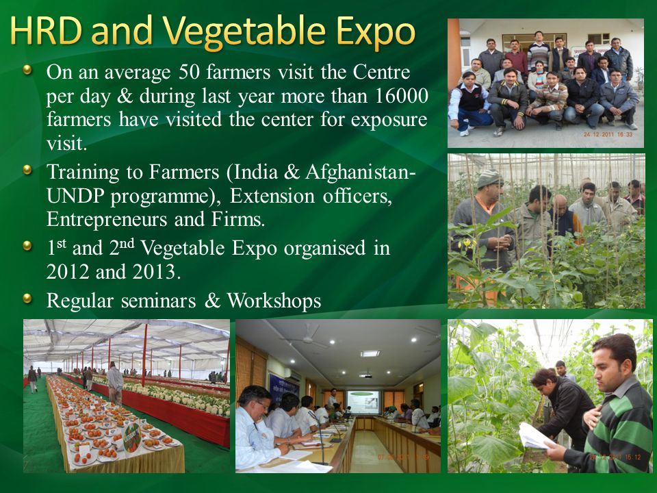 HRD and Vegetable Expo