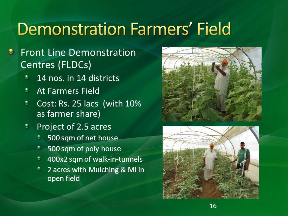 Demonstration Farmers' Field