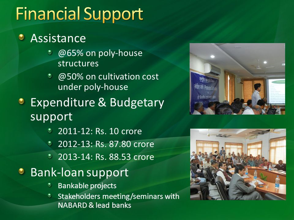 Financial Support Assistance Expenditure & Budgetary support