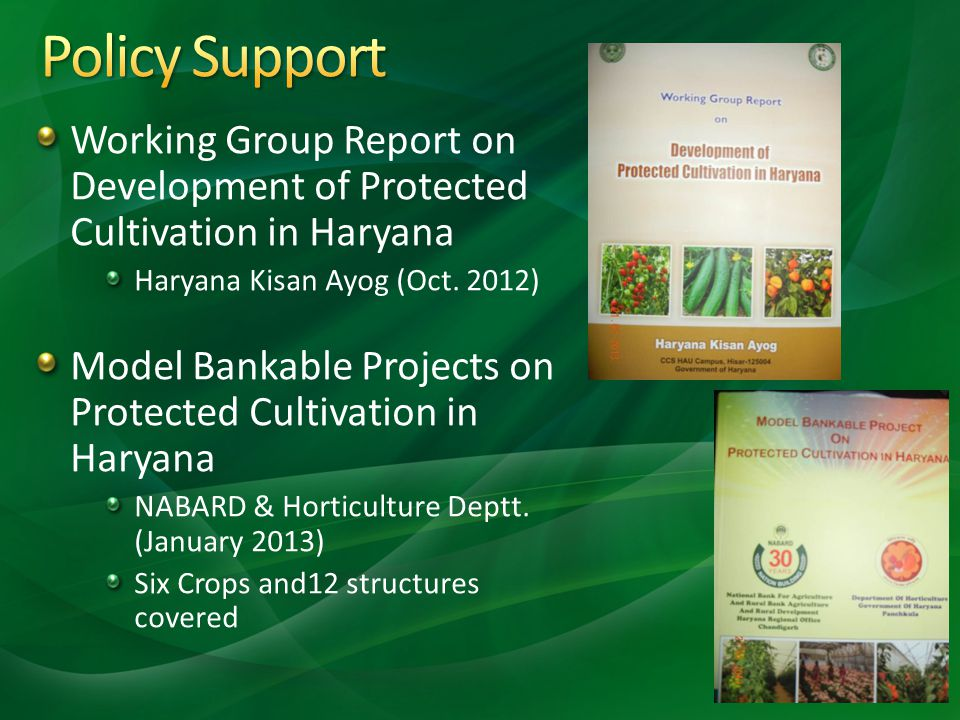 Policy Support Working Group Report on Development of Protected Cultivation in Haryana. Haryana Kisan Ayog (Oct. 2012)