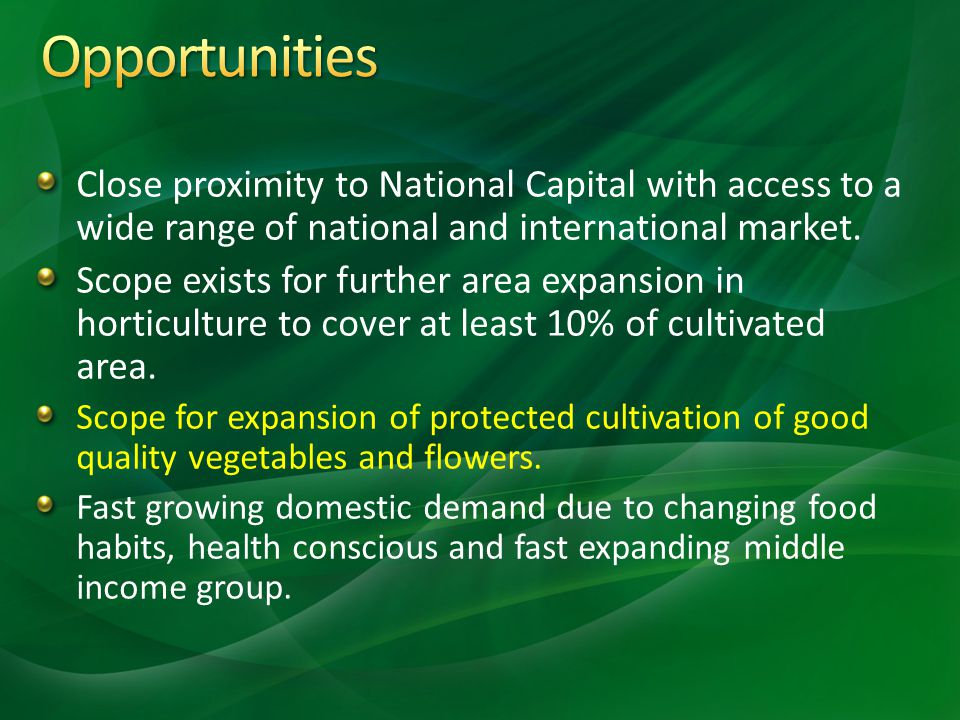 Opportunities Close proximity to National Capital with access to a wide range of national and international market.