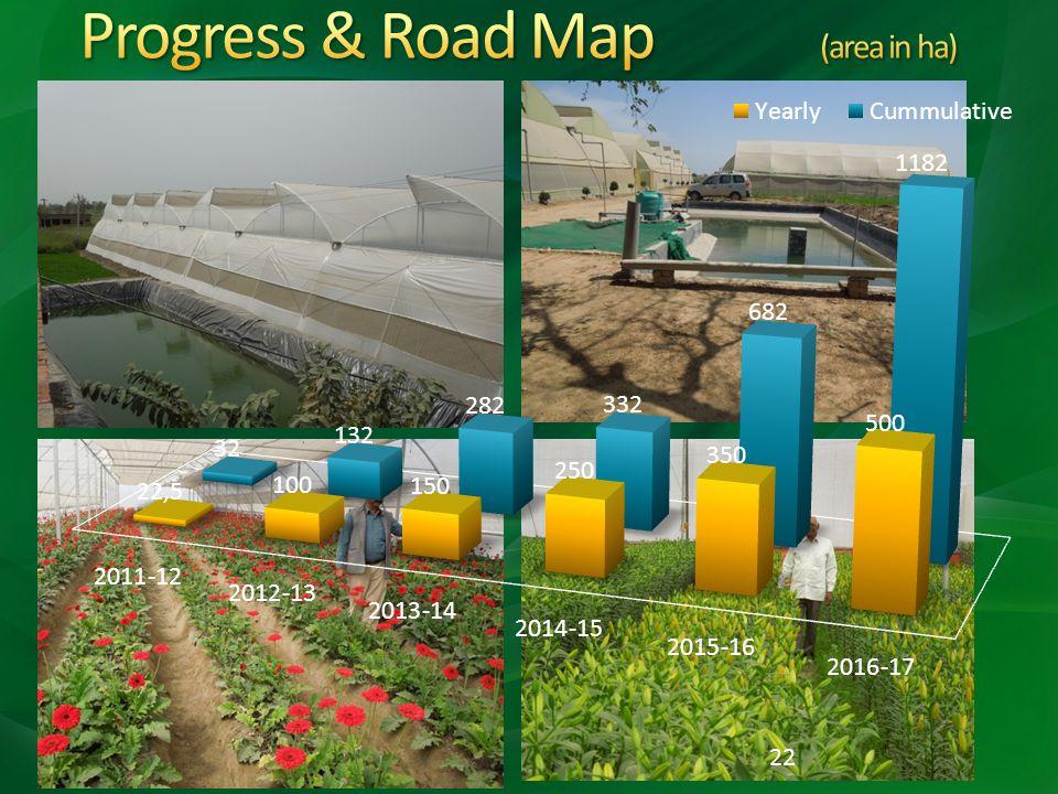 Progress & Road Map (area in ha)