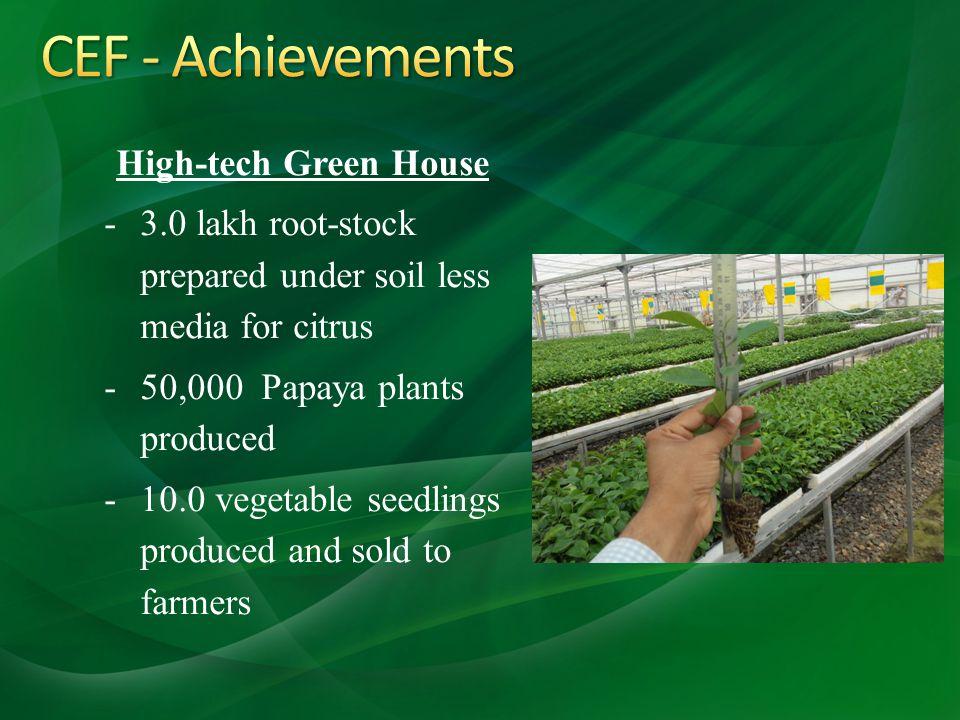 CEF - Achievements High-tech Green House