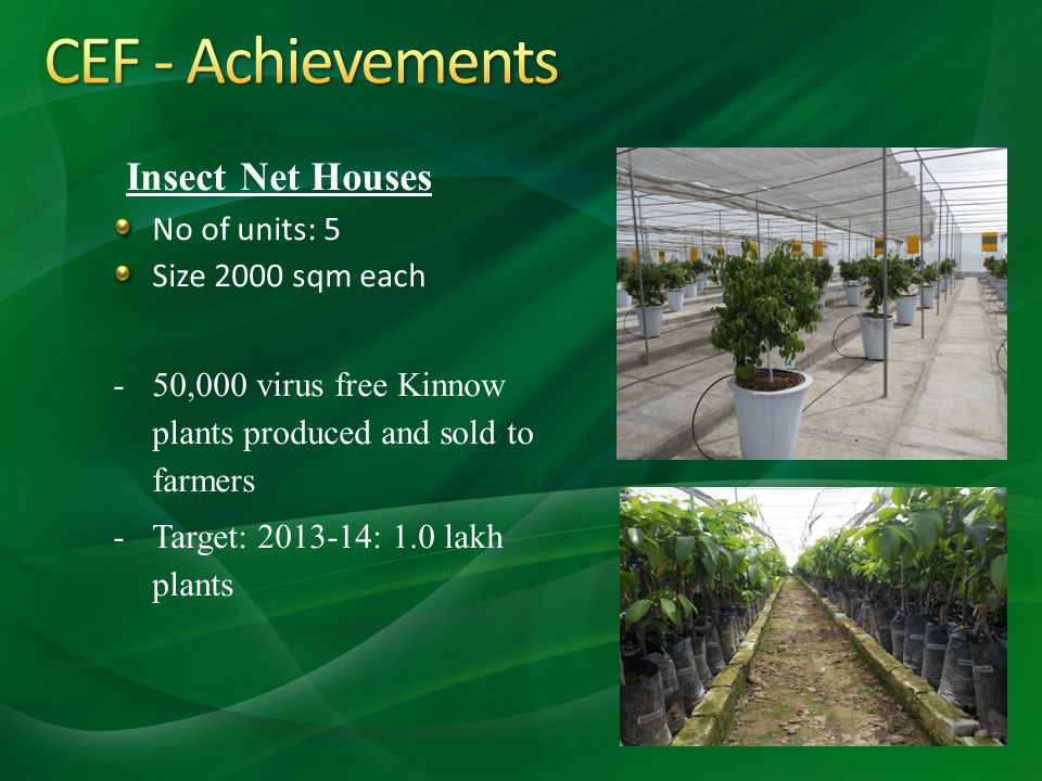 CEF - Achievements Insect Net Houses No of units: 5 Size 2000 sqm each