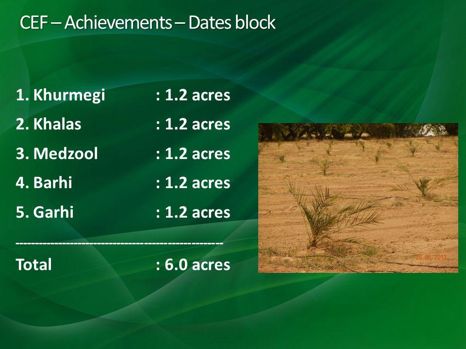 CEF – Achievements – Dates block