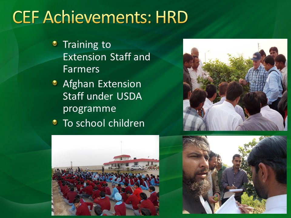 CEF Achievements: HRD Training to Extension Staff and Farmers