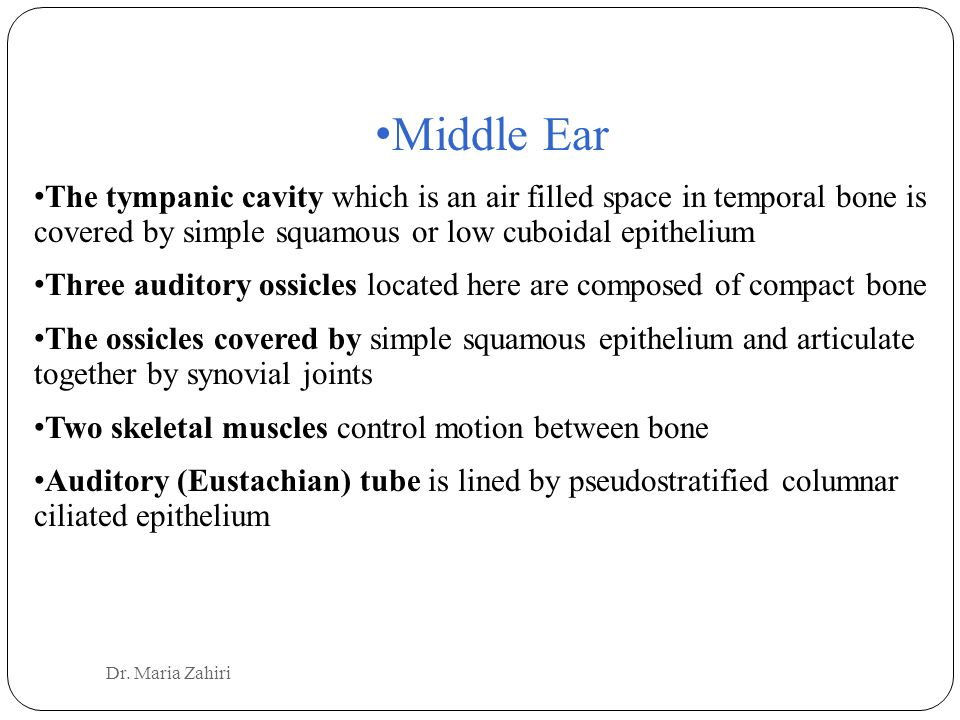 Middle Ear The tympanic cavity which is an air filled space in temporal bone is covered by simple squamous or low cuboidal epithelium.