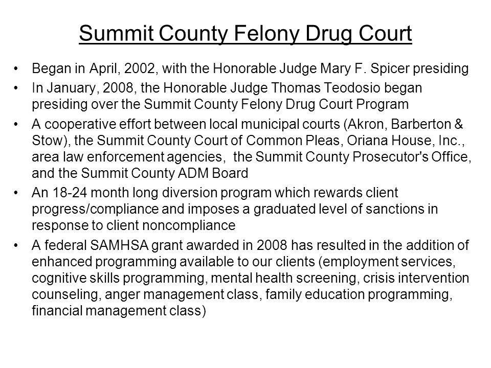 Summit County Felony Drug Court
