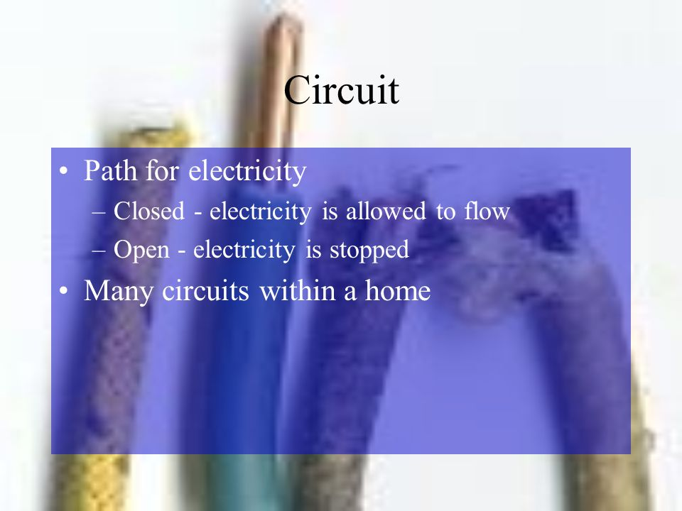 Circuit Path for electricity Many circuits within a home