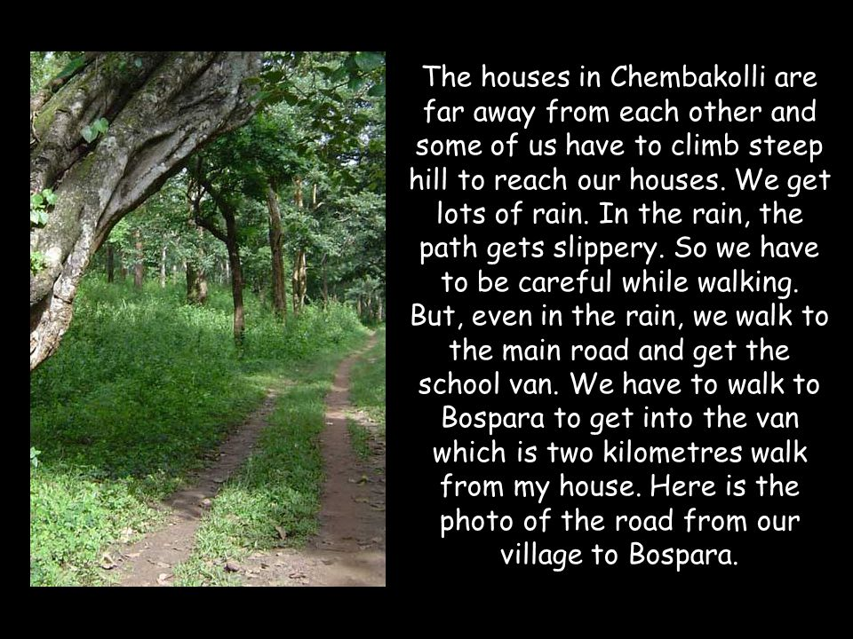 The houses in Chembakolli are far away from each other and some of us have to climb steep hill to reach our houses.
