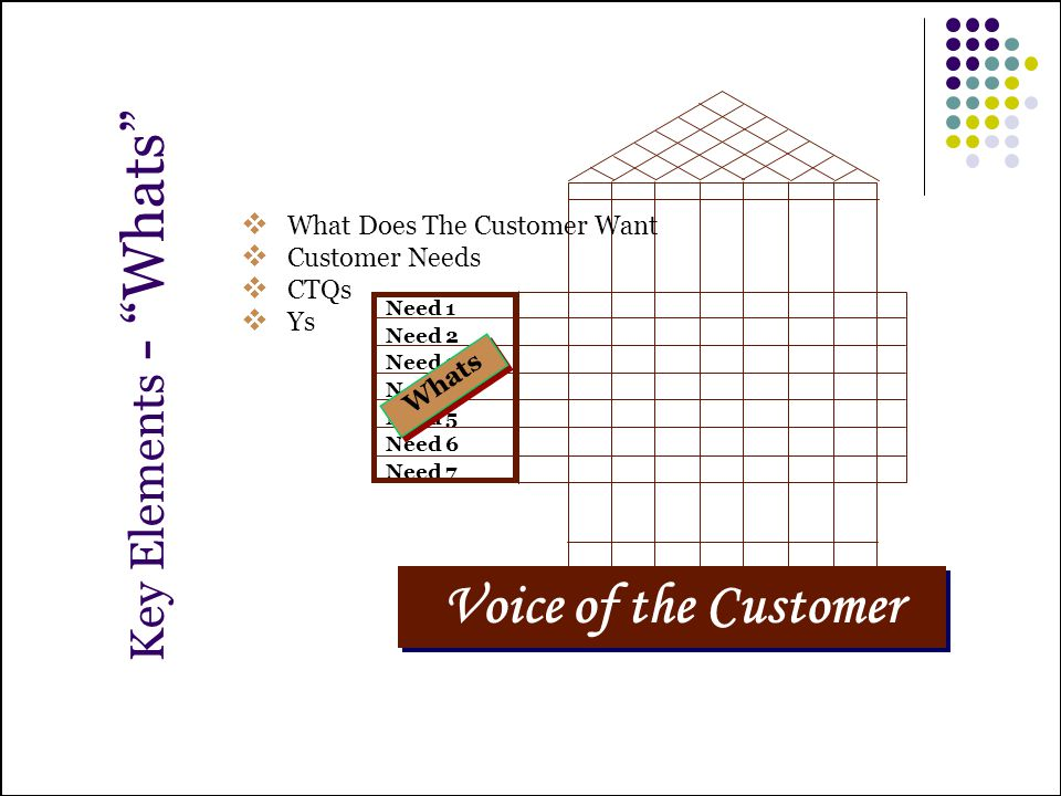 Voice of the Customer Key Elements - Whats