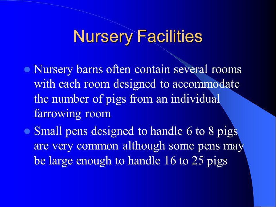 Nursery Facilities