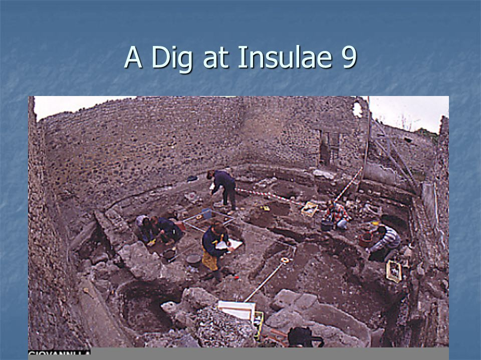 A Dig at Insulae 9