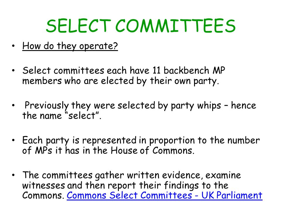 SELECT COMMITTEES How do they operate