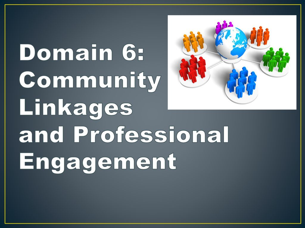 Domain 6: Community Linkages and Professional Engagement