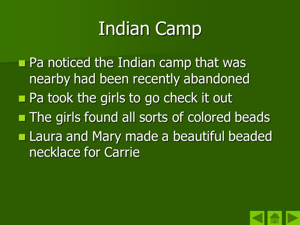 Indian Camp Pa noticed the Indian camp that was nearby had been recently abandoned. Pa took the girls to go check it out.