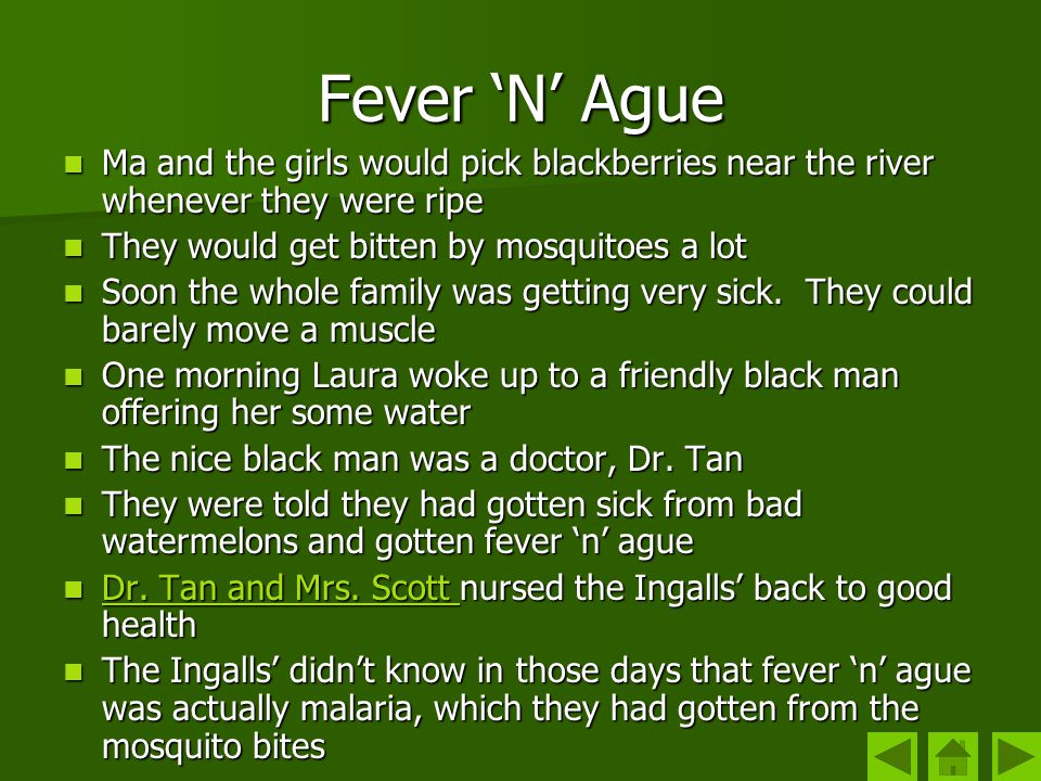 Fever 'N' Ague Ma and the girls would pick blackberries near the river whenever they were ripe. They would get bitten by mosquitoes a lot.