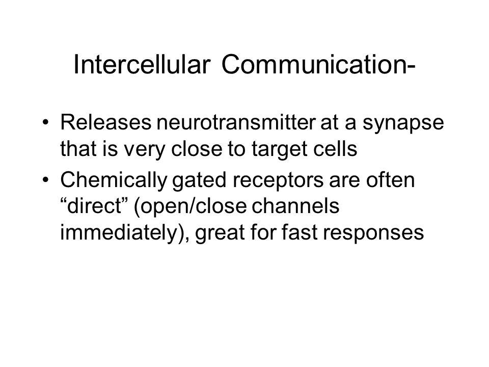 Intercellular Communication-