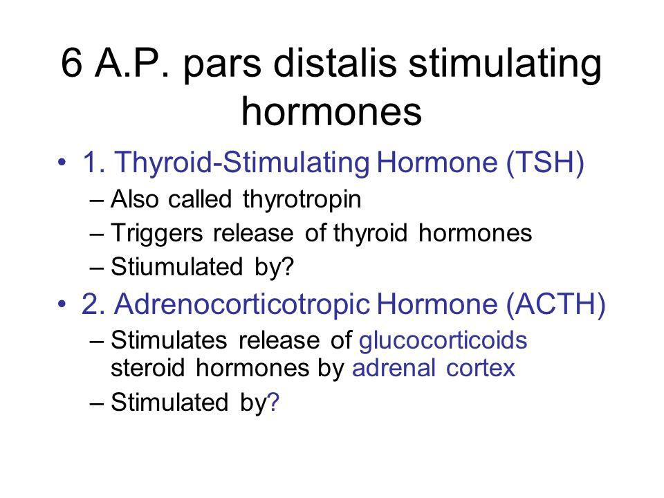 6 A.P. pars distalis stimulating hormones