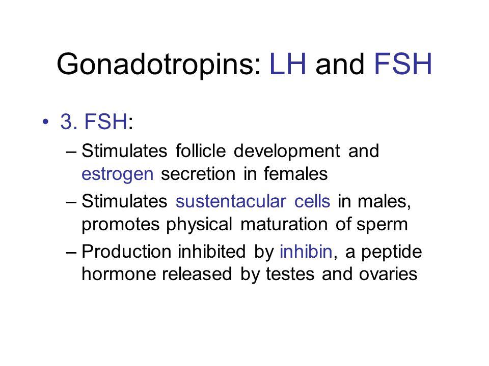 Gonadotropins: LH and FSH