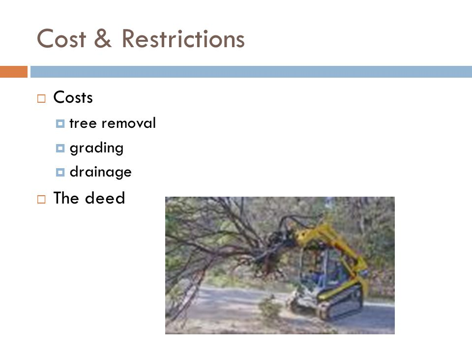 Cost & Restrictions Costs tree removal grading drainage The deed