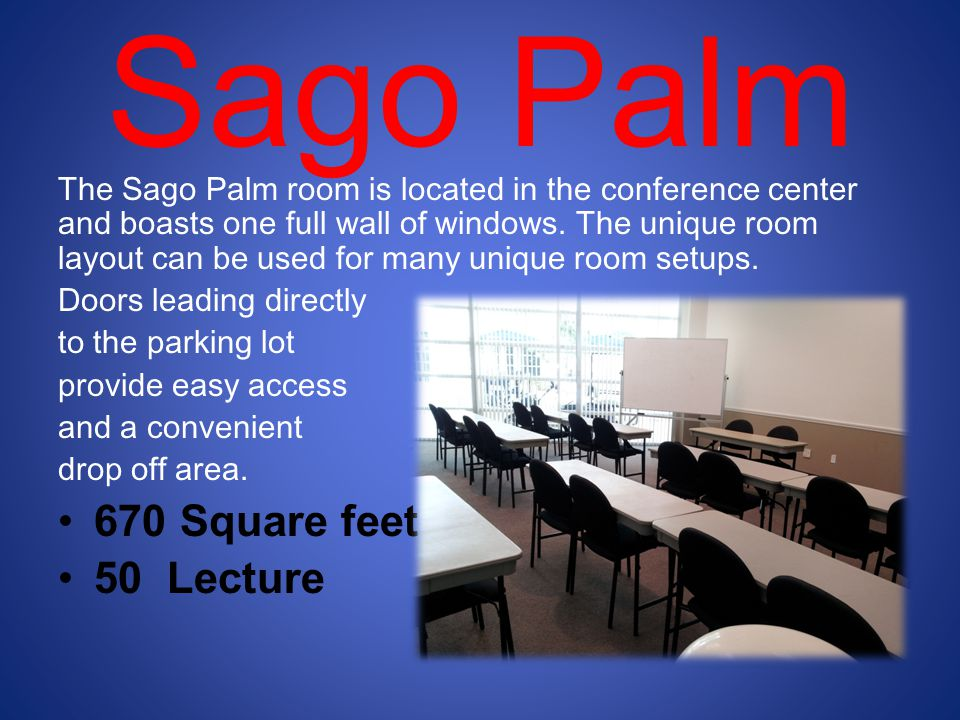 Sago Palm 670 Square feet 50 Lecture