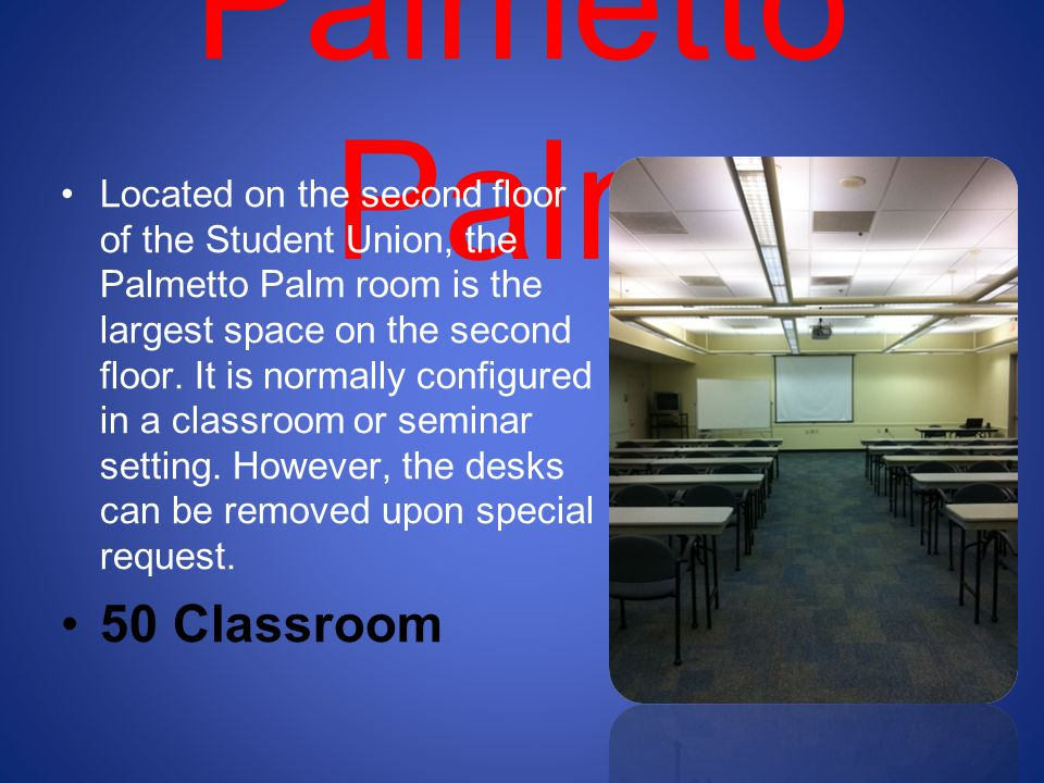 Palmetto Palm 50 Classroom
