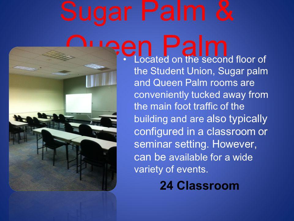 Sugar Palm & Queen Palm 24 Classroom