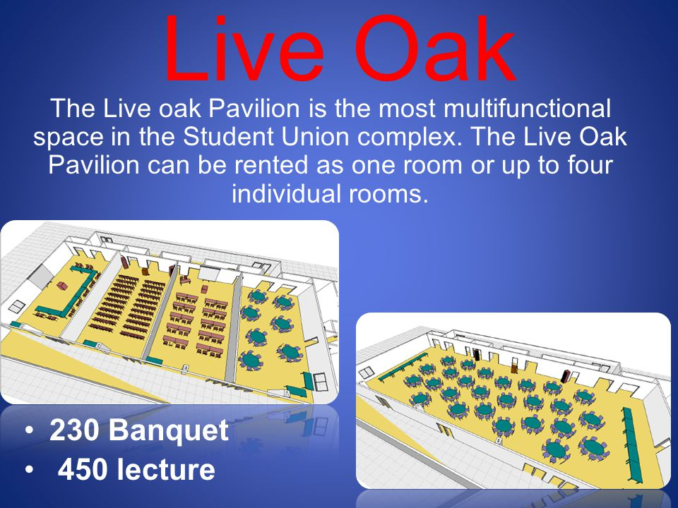 Live Oak 230 Banquet 450 lecture