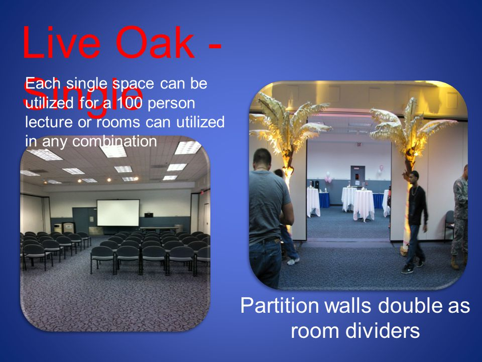 Partition walls double as room dividers