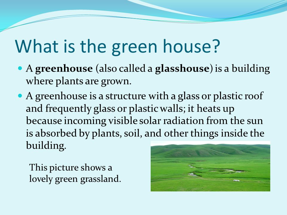 What is the green house A greenhouse (also called a glasshouse) is a building where plants are grown.
