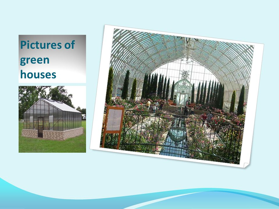 Pictures of green houses