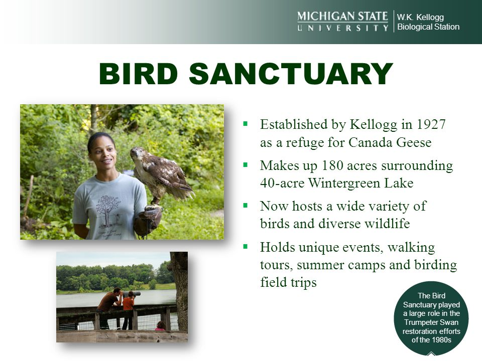W.K. Kellogg Biological Station. BIRD SANCTUARY. Established by Kellogg in 1927 as a refuge for Canada Geese.