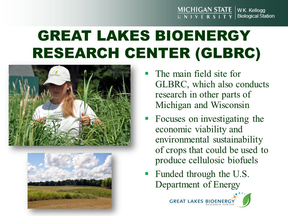 GREAT LAKES BIOENERGY RESEARCH CENTER (GLBRC)