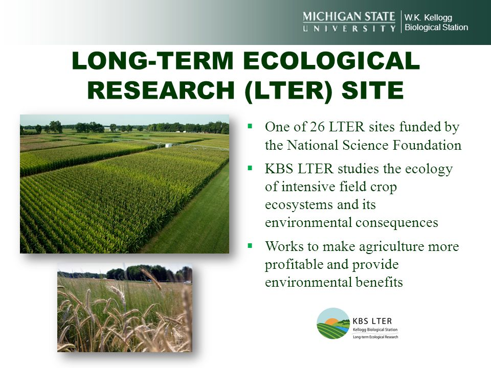 LONG-TERM ECOLOGICAL RESEARCH (LTER) SITE