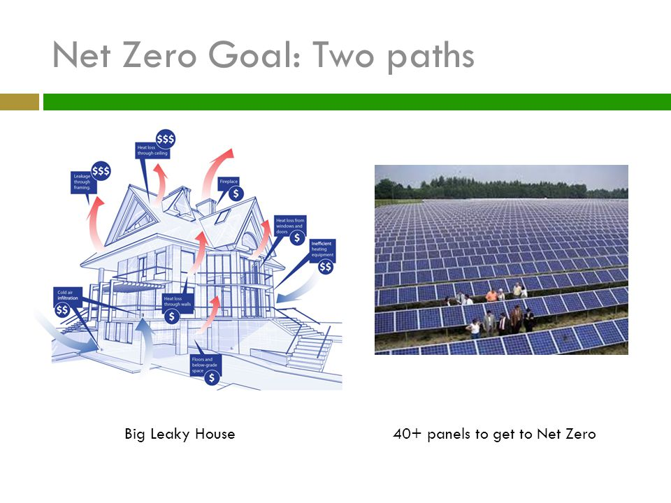 Net Zero Goal: Two paths