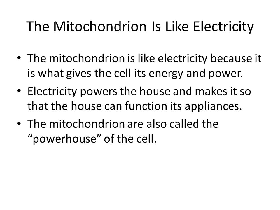 The Mitochondrion Is Like Electricity