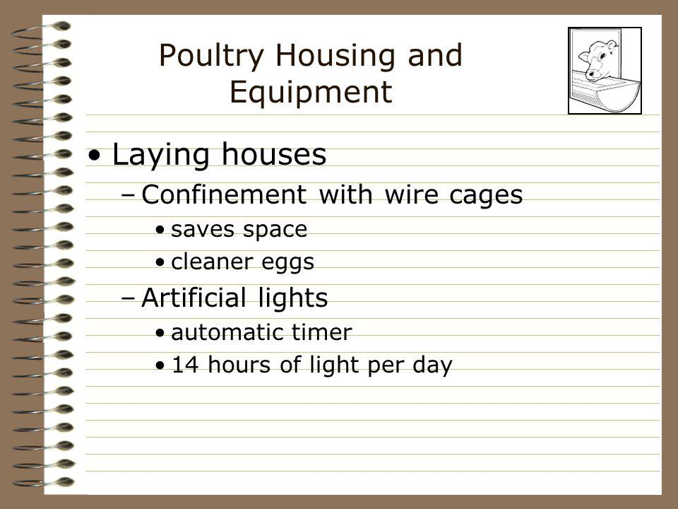 Poultry Housing and Equipment