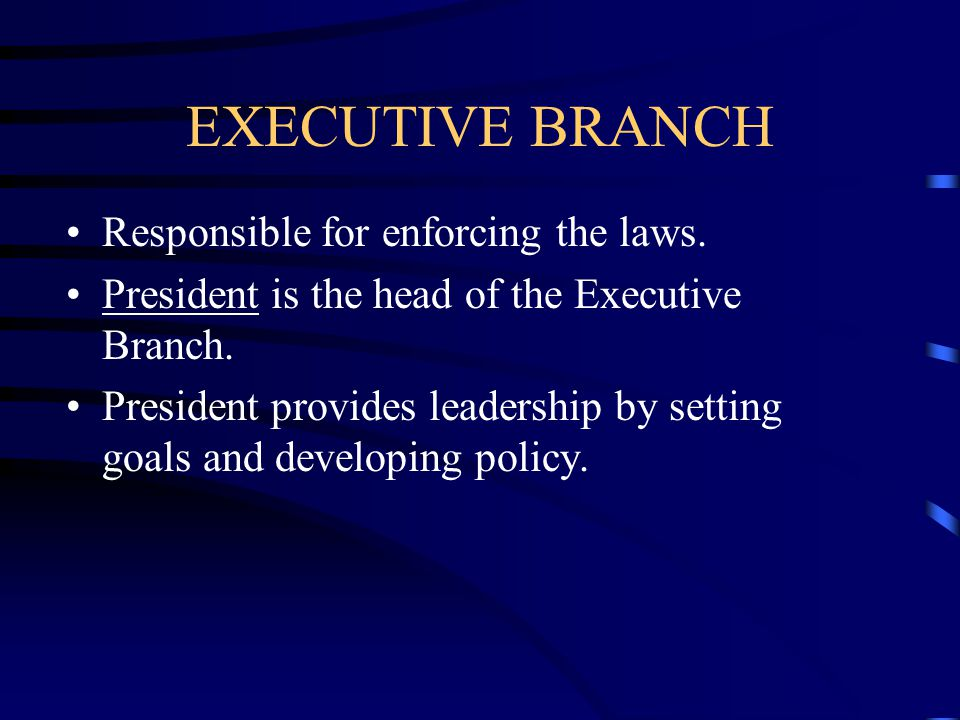 EXECUTIVE BRANCH Responsible for enforcing the laws.