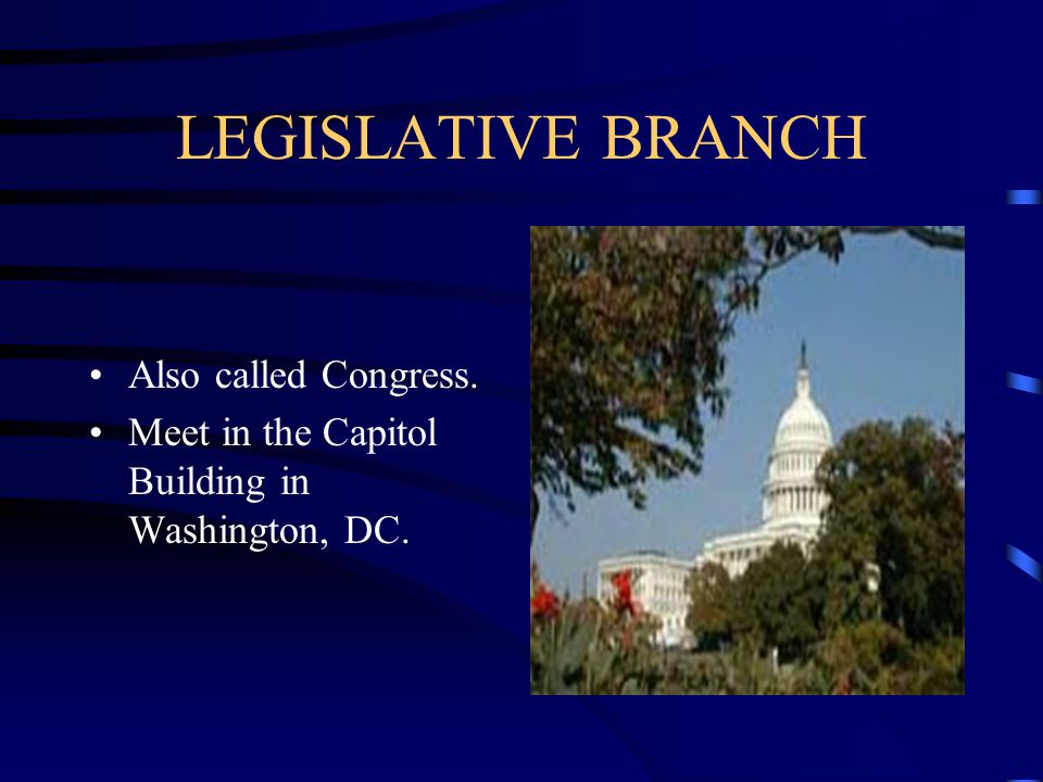 LEGISLATIVE BRANCH Also called Congress.