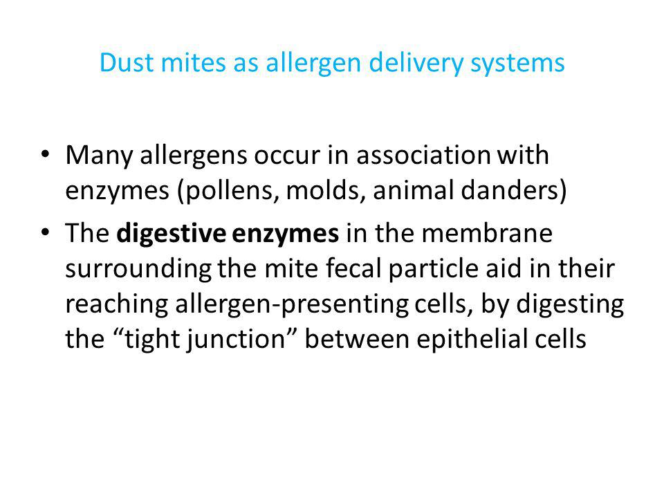 Dust mites as allergen delivery systems