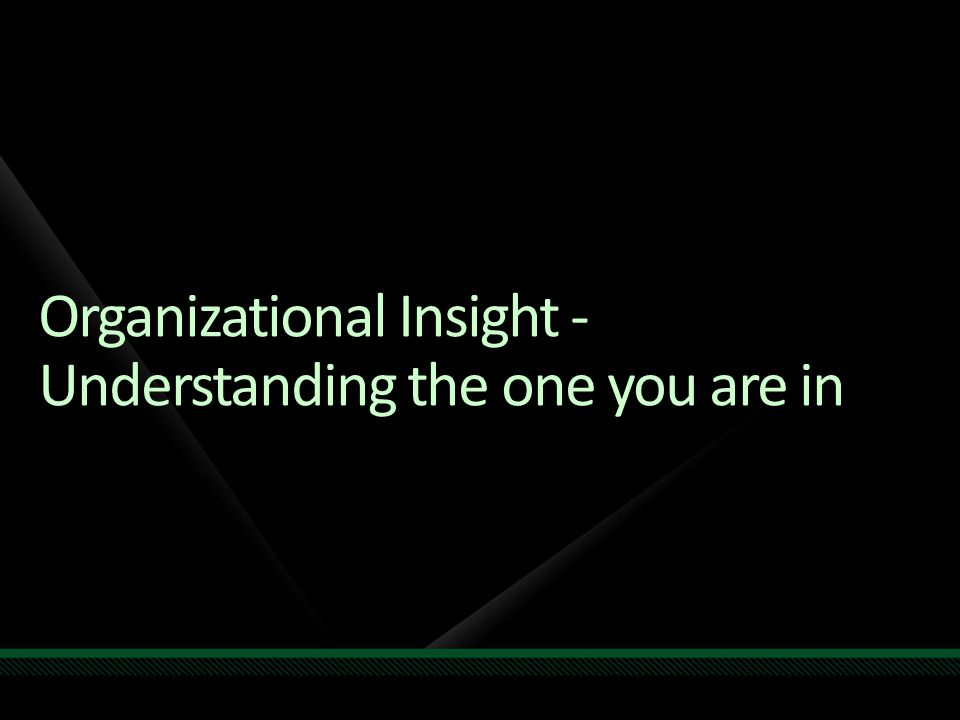Organizational Insight - Understanding the one you are in