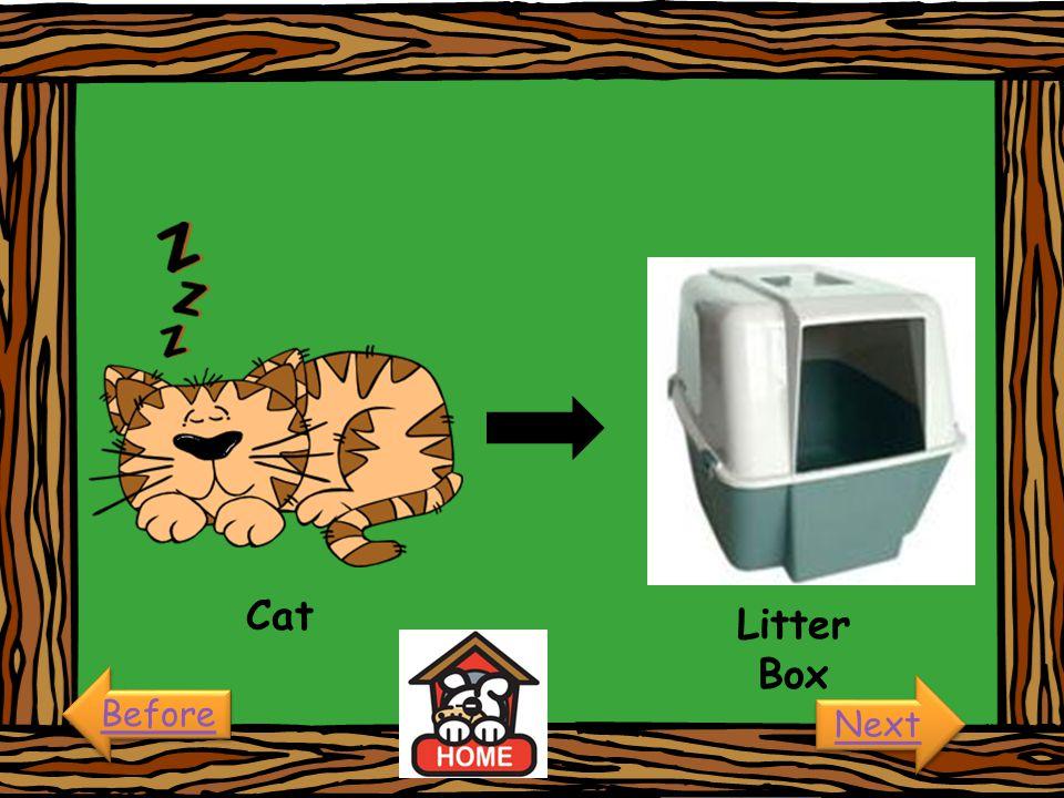 Cat Litter Box Before Next