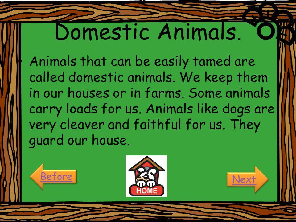 Domestic Animals.