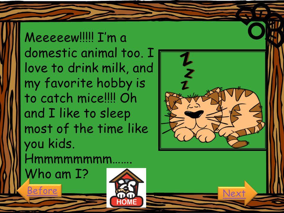 Meeeeew. I'm a domestic animal too