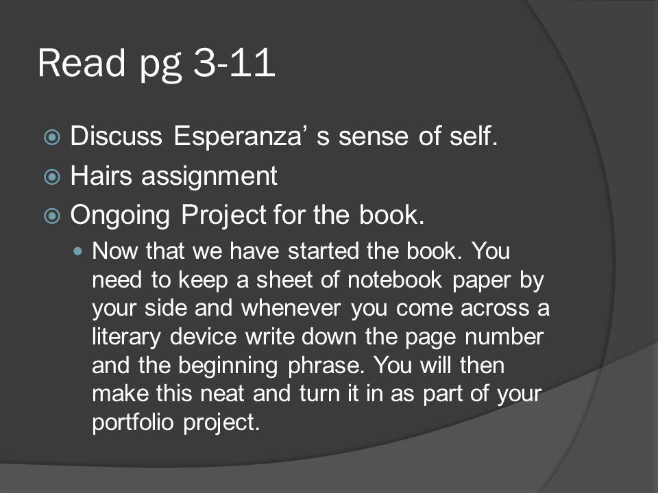 Read pg 3-11 Discuss Esperanza' s sense of self. Hairs assignment