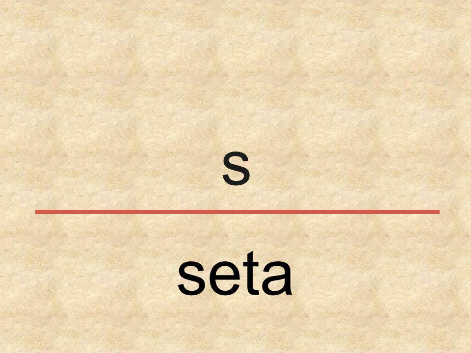 s seta