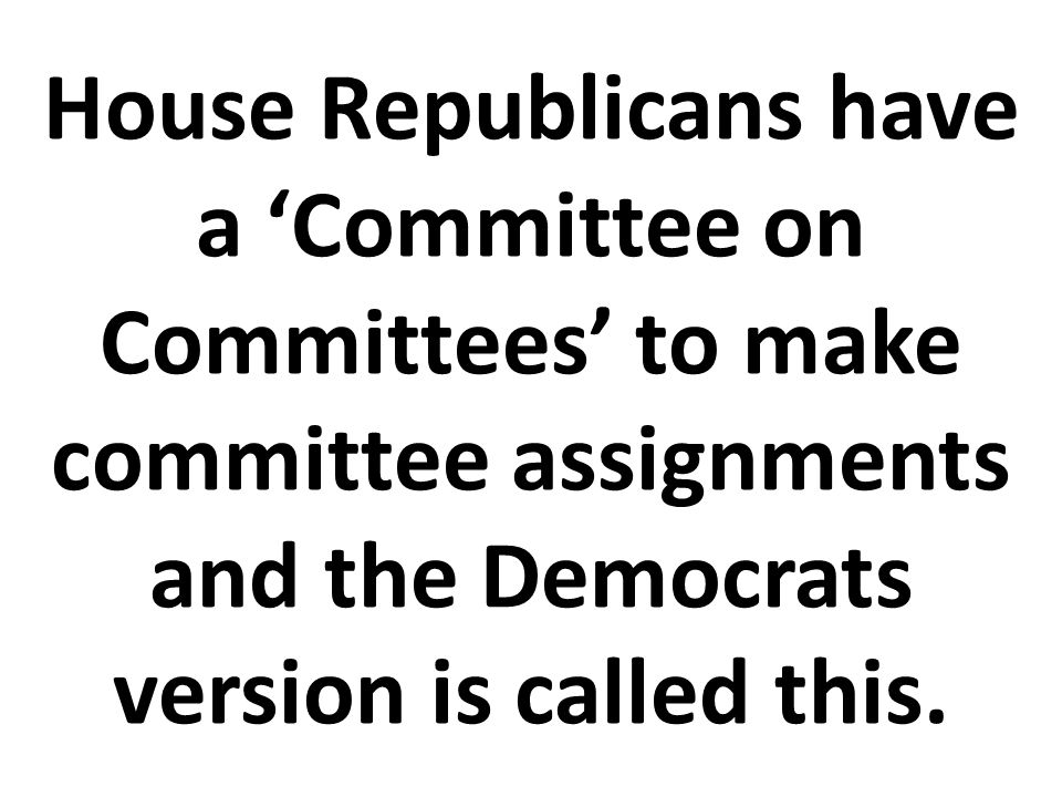 House Republicans have a 'Committee on Committees' to make committee assignments and the Democrats version is called this.