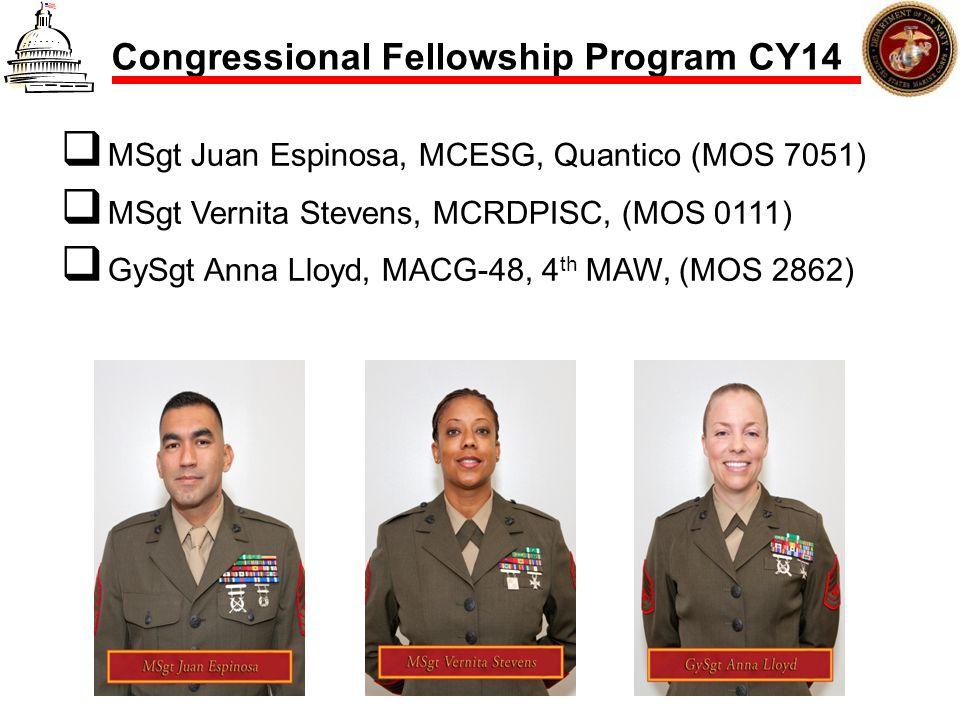 Congressional Fellowship Program CY14