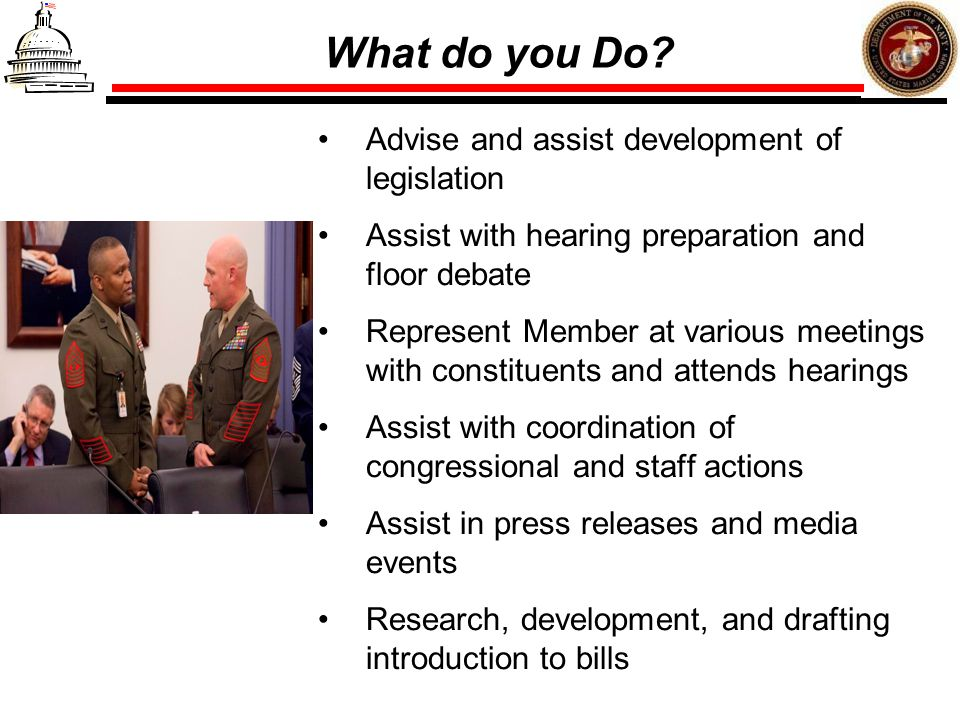 What do you Do Advise and assist development of legislation